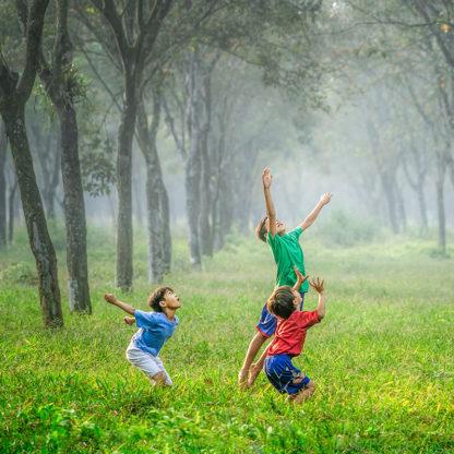 enfants qui joue dans la forêt